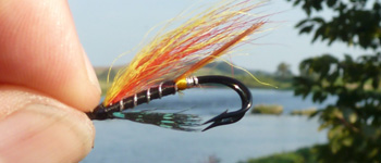 Garry Dog salmon fly